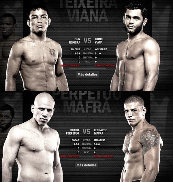 UFC 147 silva Vs Franklin II Cartelera